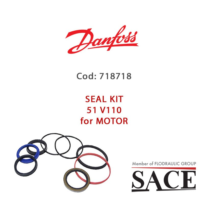 718718 - SEAL KIT 51 V110 FOR MOTOR